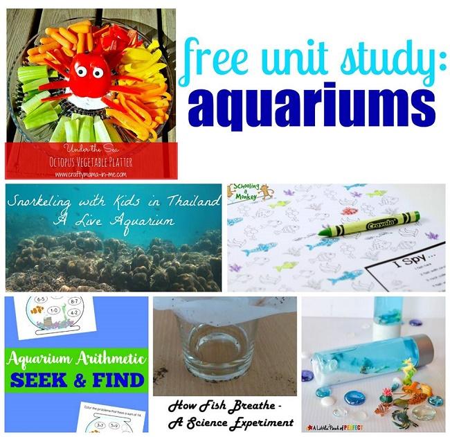 aquarium unit study