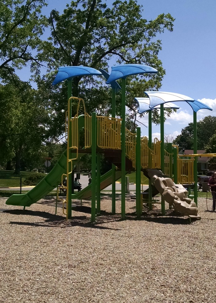 Shoup Park Blue covered playset