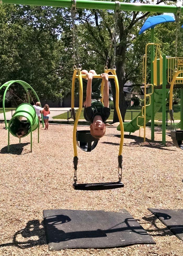 Shoup Park Double Swing Monkey
