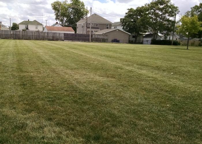 grassy area at Kiwanis Park