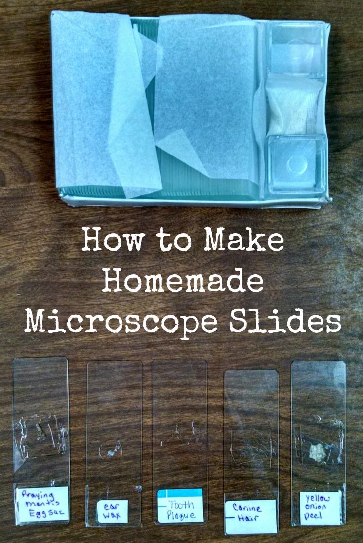 How to Make Homemade Microscope Slide