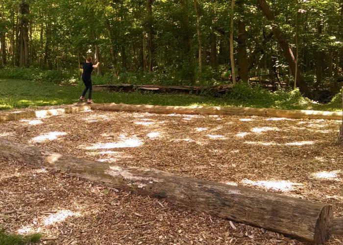 log balance beams