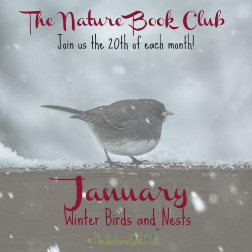 January Winter Birds and Nests TNBC