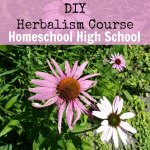 Herbalism Course