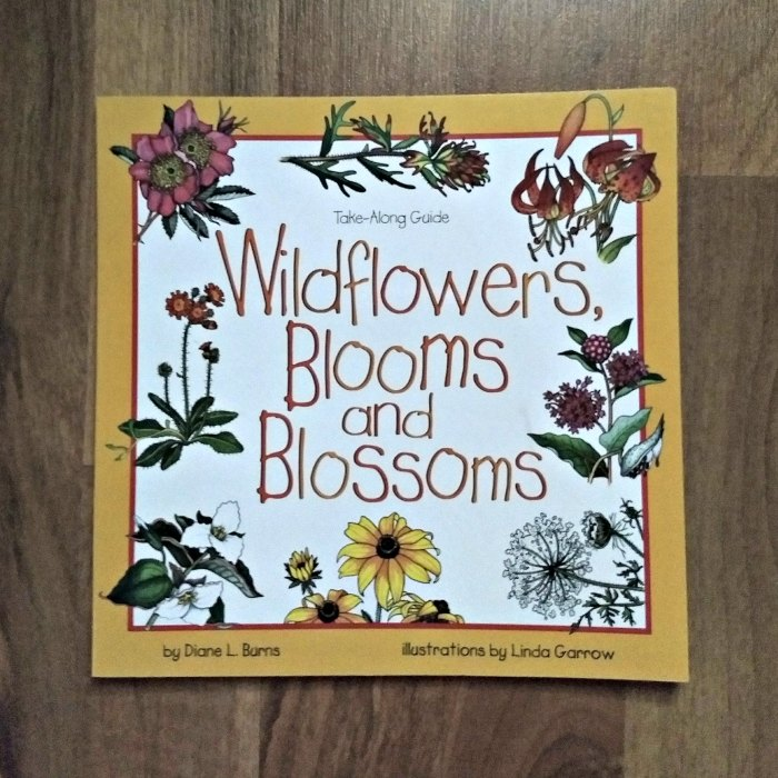 Wildflowers, Blooms and Blossoms