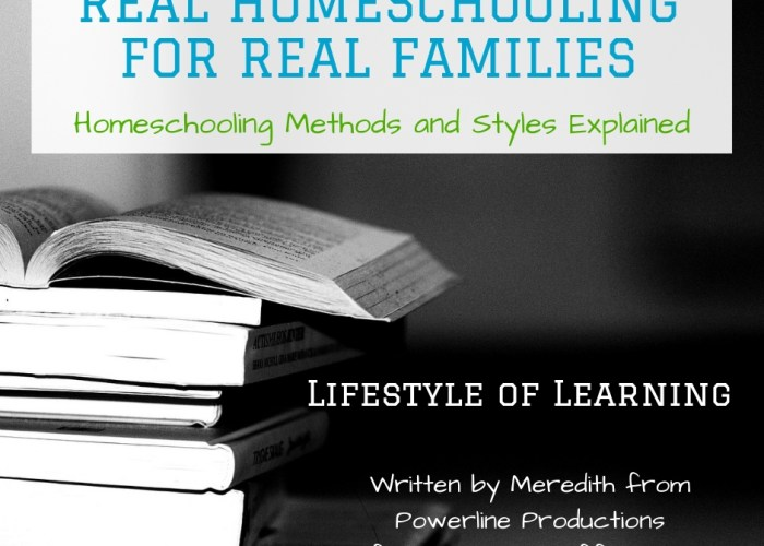 Lifestyle of Learning Homeschooling Style {Real Homeschooling for Real Families}