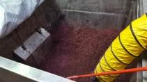 Pinot tank pre dug-out