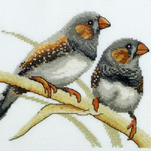 Country Threads Fiona Jude Cross Stitch Kit ZEBRA FINCHES Counted X Stitch NEW incl Thread