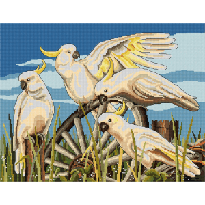 Country Threads Cross Stitch Counted X Stitch Kit CARTWHEEL COCKATOO Inc Aida New FJ-1084