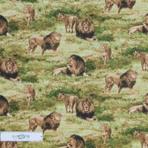 Patchwork Quilting Sewing Fabric BORN FREE LIONS Allover 50x55cm FQ New