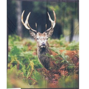 Patchwork Quilting Sewing Fabric MAJESTIC DEER Panel 90x110cm New