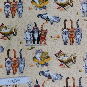 Quilting Patchwork Sewing Fabric SASSY CATS 50x55cm FQ New