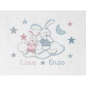 DMC Cross Stitch Kit BABY FIRST NAME SAMPLER BK1620 New