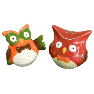 Collectable Novelty Salt and Pepper Shakers Set FUNKY OWLS Kitchen New