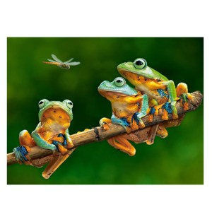 5D Diamond Painting Full Image Square Drills FROGS 45x30cm
