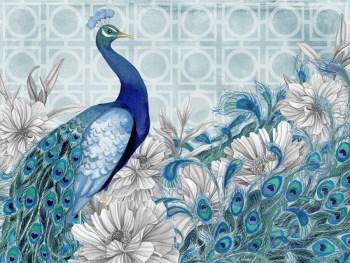 Peacock Plumes Collection Nicole Tamarin