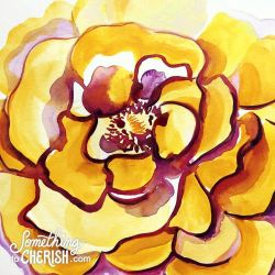golden colorado rose watercolor by cherish flieder