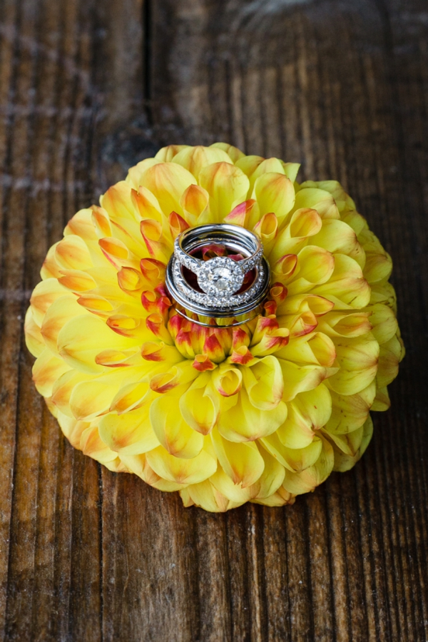 SomethingTurquoise_DIY_wedding_Red_Sparrow_Photography_0002.jpg
