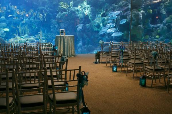 SomethingTurquoise_DIY_aquarium_wedding_Carrie_Wildes_Photography_0014.jpg