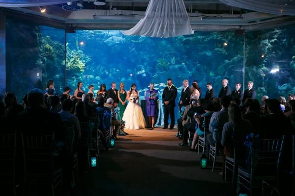 SomethingTurquoise_DIY_aquarium_wedding_Carrie_Wildes_Photography_0016.jpg