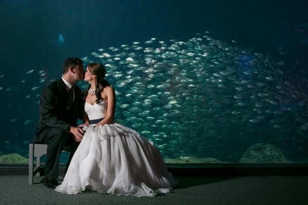 SomethingTurquoise_DIY_aquarium_wedding_Carrie_Wildes_Photography_0022.jpg