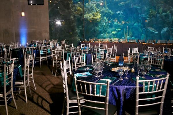 SomethingTurquoise_DIY_aquarium_wedding_Carrie_Wildes_Photography_0030.jpg