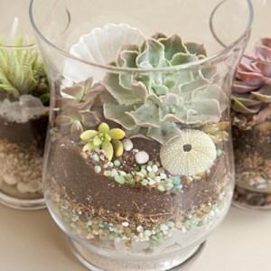 DIY beach wedding terrariums