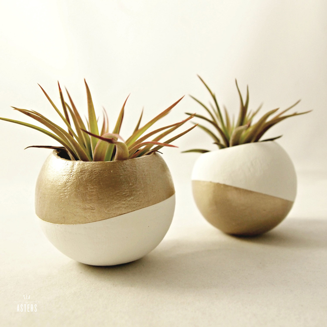 Metallic gold air plant pots from Sea & Asters