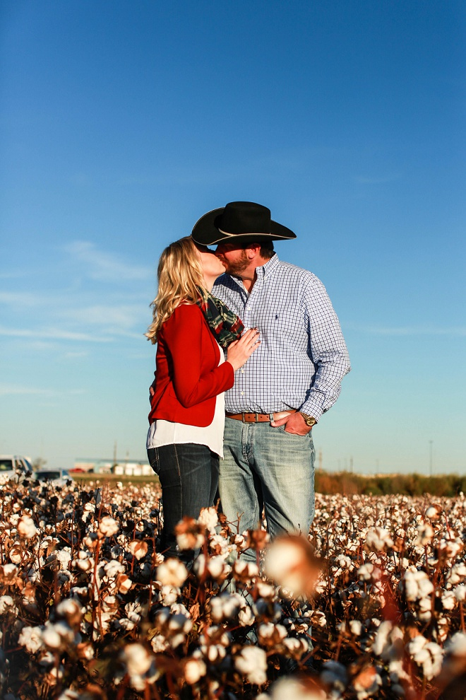 Adorable engagement shoot in a cotton field!