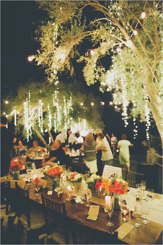 Drape lights from trees to make a magical outdoor wedding space!