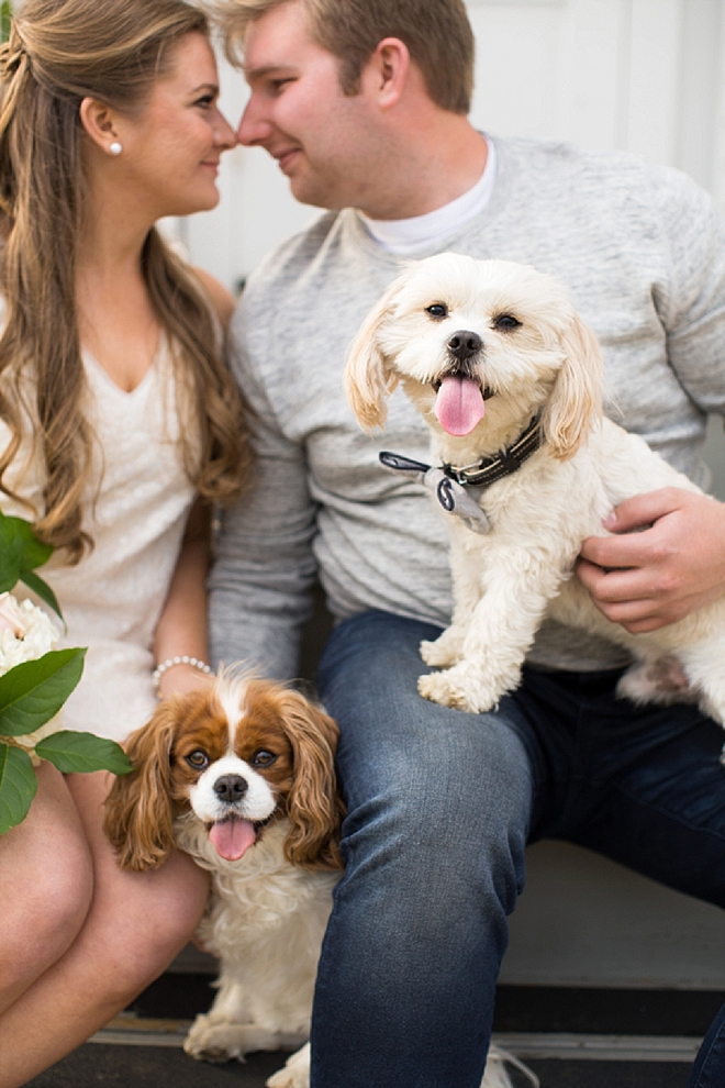 We love this darling engagement session with bouquets, pups and love!
