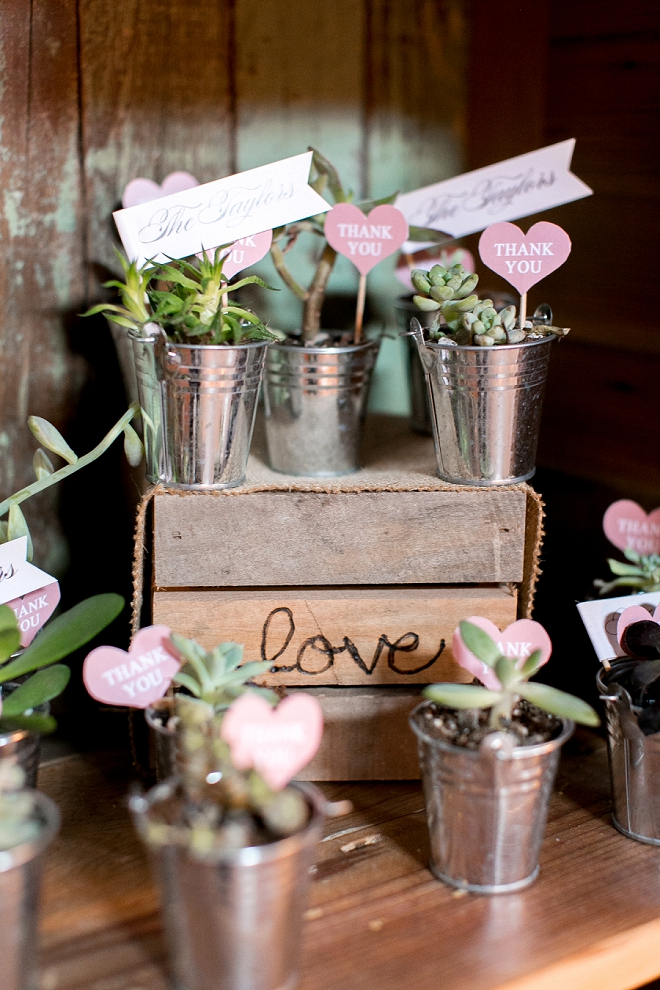 We love these DIY plant favors at this couple's darling day!