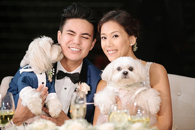 How cute is this snap of the Mr. and Mrs. with their fur babies?! LOVE!