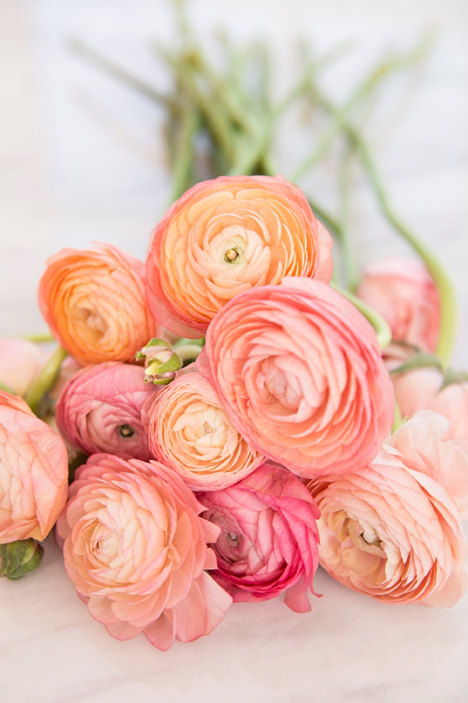 Everything you need to know about working with ranunculus for your wedding or special event!