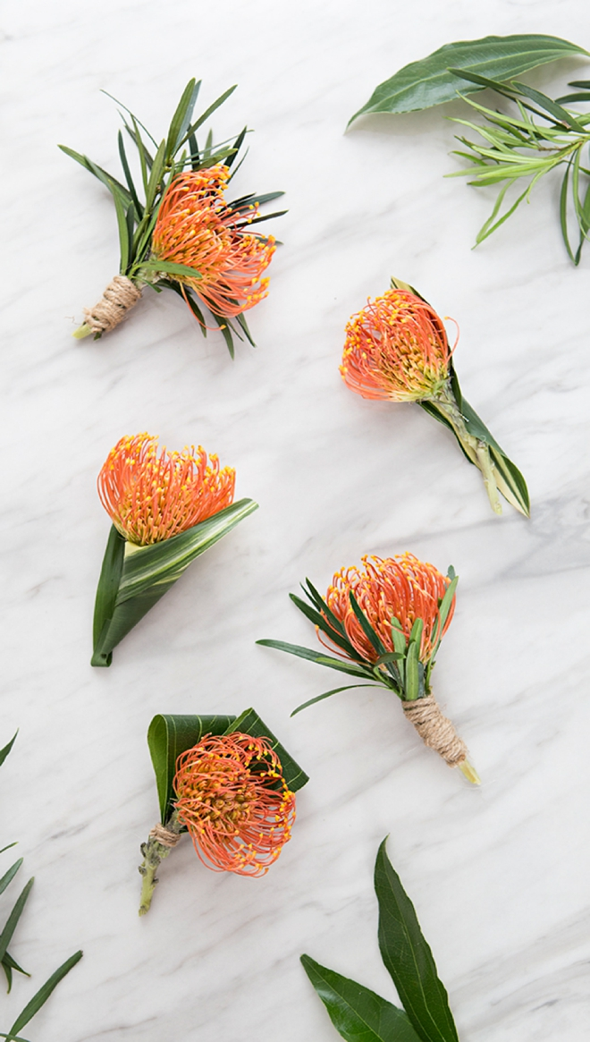 Check out these awesome pin cushion protea boutonnieres!