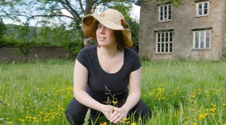 Wildlife in a British Garden
