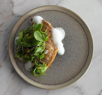 Snapper - purslane - fennel - smoked cream low res