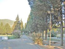 Valdanos road