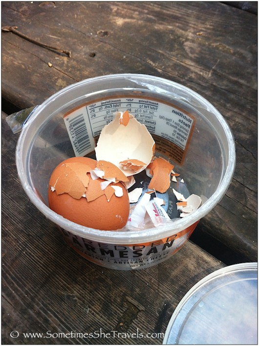 Hard boiled eggs in container