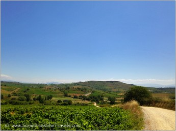 Day 25: Molinaseca to Villafranca