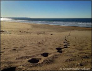 Footprints on beach leading to ocean