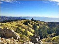 Hills, rocks, trees, and blue ocean