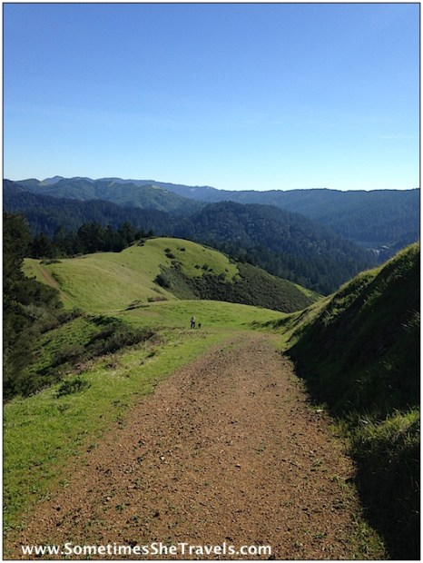 Descending Barnabe Road toward the Leo T. Cronin fish viewing area where Tristan and I begin our San Geronimo Ridge trail hike January 18.