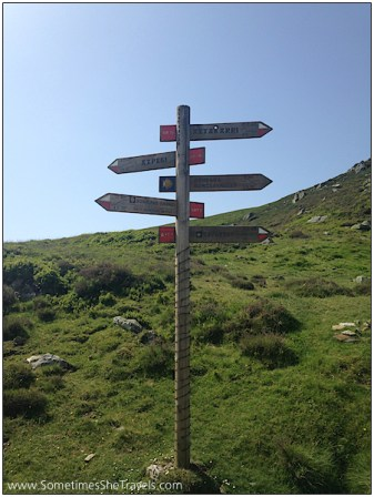 Signs pointing every which way