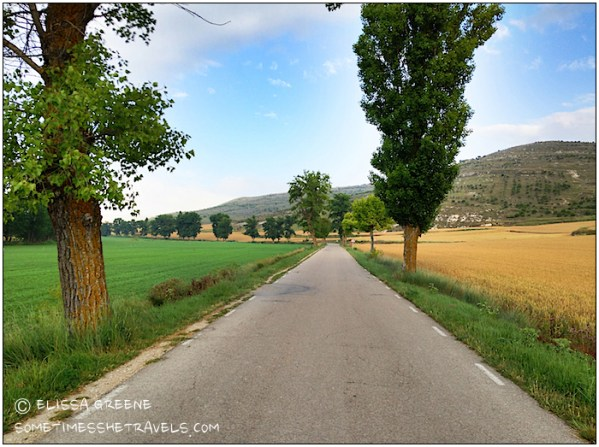Little did I know that this lovely country road would lead to the beautiful ruins of an old monastery.