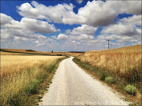 Camino de Santiago: Walking Through Fields Near San Nicolas