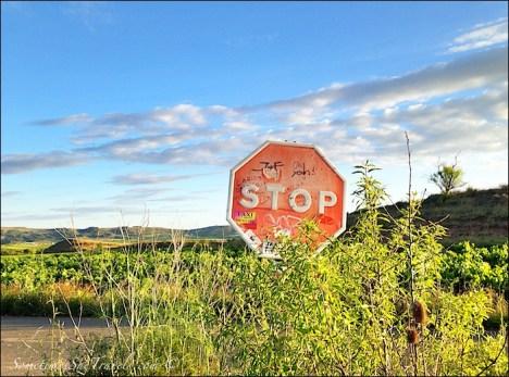 camino de santiago stop sign