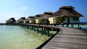 Ellaidhoo – going solo in the Maldives