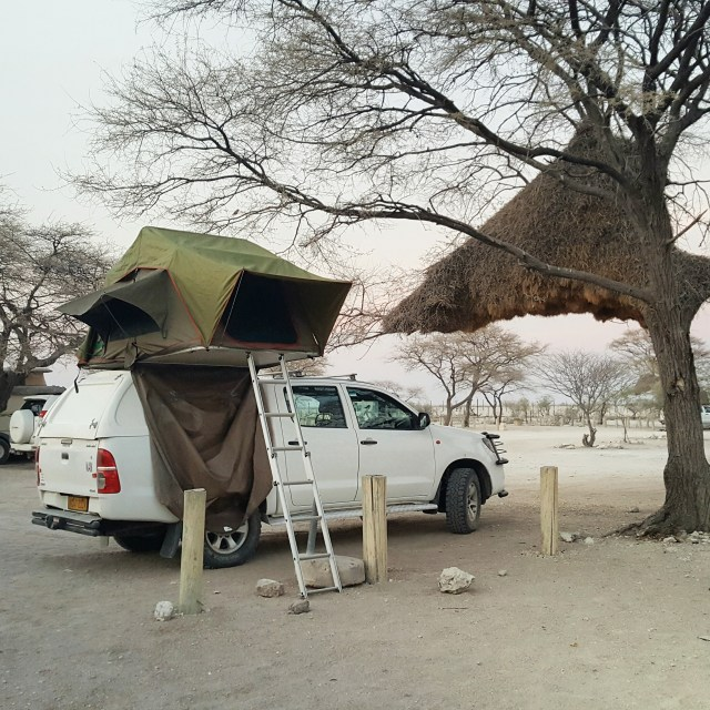 Solo self drive in Namibia