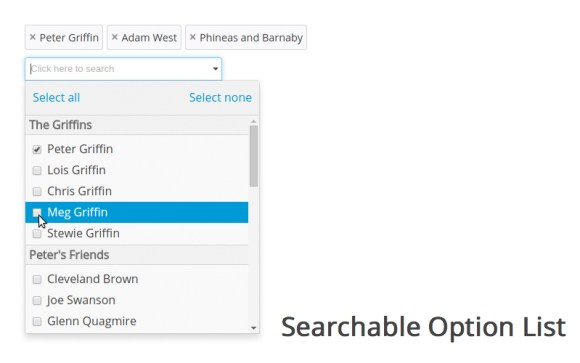 Searchable Option List